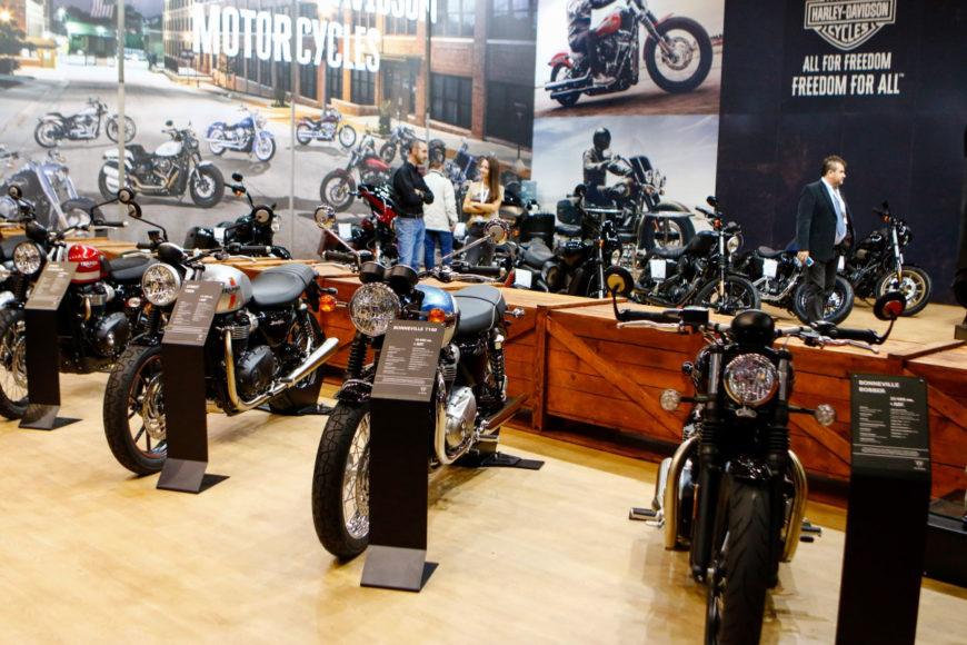 Harley,-Triumph_3
